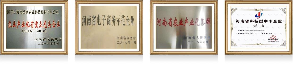 河南垄润农业科技股份有限公司